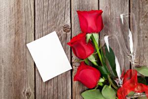 Фото Праздники Розы Доски Шаблон поздравительной открытки Лист бумаги Красный Втроем Бокалы Цветы