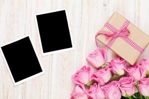 Фотография Праздники Роза Доски Шаблон поздравительной открытки Розовая Подарок Цветы