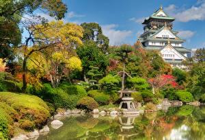 Обои Япония Замки Парки Пруд Осенние Деревья Кусты Osaka Castle park