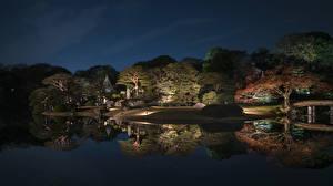 Фото Япония Токио Парки Пруд Деревья Ночные Отражение