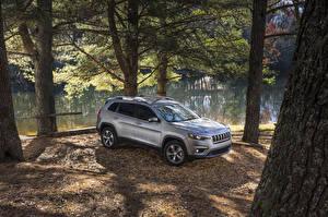 Фото Джип Берег 2019 Cherokee Limited Авто
