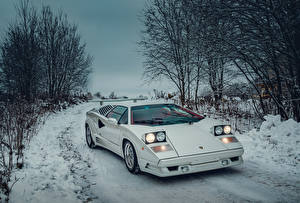 Картинки Lamborghini Ретро Белых 1988-1990 Countach 25 Anniversary with option Rear Wing Worldwide автомобиль