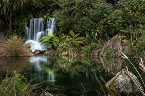 Обои Новая Зеландия Парки Водопады Камень Природа