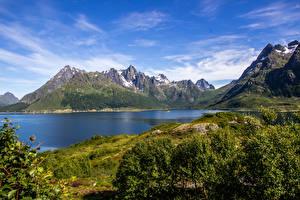 Фото Норвегия Лофотенские острова Горы Речка Кусты Мох Природа