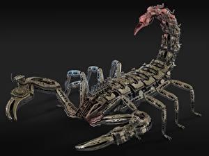 Фотографии Скорпионы Робот Металлический Сером фоне