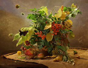 Картинки Натюрморт Букеты Рябина Яблоки Бабочки Листва Корзина Природа