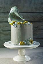 Фото Сладкая еда Торты Дизайна Еда