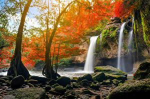 Фото Таиланд Парки Водопады Камень Деревья Утес Мох Heo Suwat Waterfall Khao Yai National Park Природа