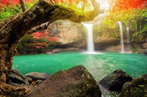 Фото Таиланд Тропики Водопады Камни Парки Ветки Heo Suwat Waterfall Khao Yai National Park Природа