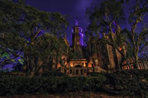 Картинка Штаты Диснейленд Парки Здания Калифорния Анахайм Дизайн Кусты Деревья Ночные