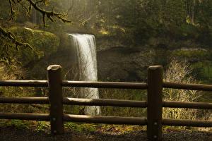 Фотографии Штаты Водопады Парк Лес Забора Скалы Silver Falls State Park Природа