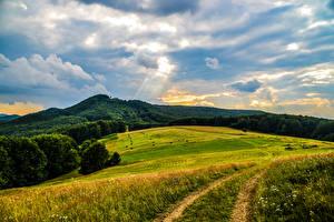 Картинки Украина Поля Леса Небо Закарпатье Природа