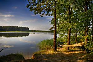Обои Украина Озеро Побережье Деревьев Гамак Krivoye Zhytomyr Oblast Природа
