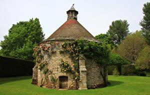 Фотография Великобритания Парки Дома Газон Кусты Athelhampton House Gardens Dorset