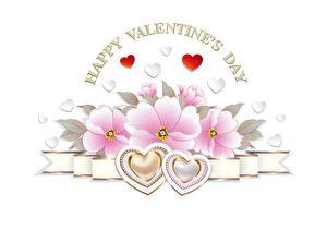 Фотография День святого Валентина Белый фон Английский Сердце
