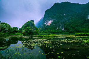 Картинки Вьетнам Речка Леса Утес