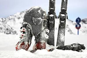 Фото Зимние Лыжный спорт Снег Шапки Перчатки