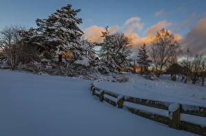 Фото Зимние Снегу Ель Забор Деревья Природа