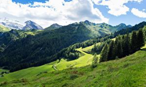 Фотографии Австрия Горы Леса Луга Альпы Облака Tyrol Природа
