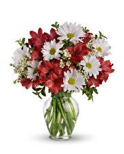 Фото Букет Хризантемы Альстрёмерия Белым фоном Вазе цветок