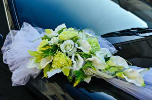 Картинки Букеты Розы Белокрыльник Свадьба Цветы
