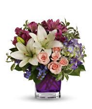 Фото Букеты Розы Лилии Альстрёмерия Белый фон Ваза Цветы