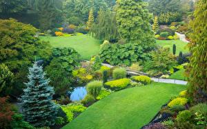 Обои Канада Сады Пруд Ванкувер Газон Кустов Queen Elizabeth Gardens Природа