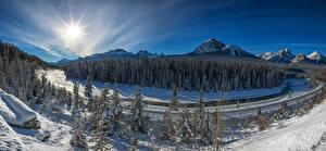 Обои Канада Парки Зимние Леса Горы Банф Снег Ель Солнце
