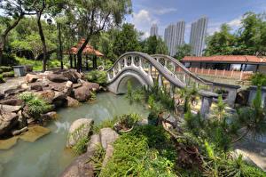 Картинка Китай Гонконг Парки Пруд Мосты Камни Chi Lin Nunnery Природа