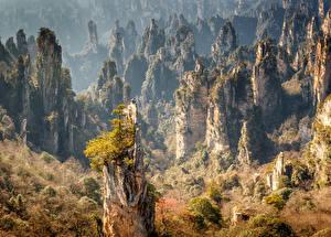 Картинки Китай Парк Леса Осень Утес Zhangjiajie National Forest Park Природа