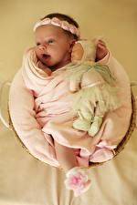 Фотографии Цветной фон Младенцы Кукла Радостный Дети