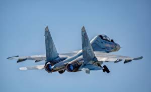 Картинки Самолеты Истребители Су-30 Полет Российские SM