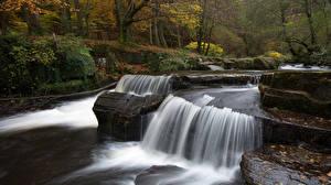 Фотография Леса Водопады Осень Природа