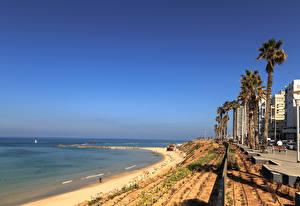 Фотография Израиль Здания Берег Пальмы Bat Yam Города