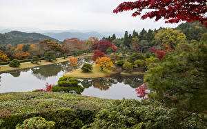 Фото Япония Киото Парки Пруд Кусты Деревья Shugakuin Imperial Villa