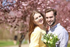 Фотография Мужчины Любовь Букеты Тюльпаны Двое Шатенка Улыбка Девушки
