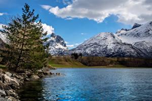 Обои Норвегия Озеро Горы Камень Ель Снег Andalsnes Природа