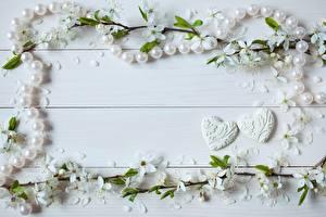 Фото Жемчуг День всех влюблённых Сердечко Доски