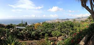 Картинки Португалия Сады Botanical garden Funchal Madeira Природа