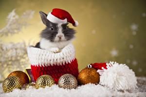 Обои Кролики Рождество Шарики Шапки Животные