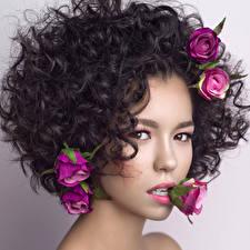 Обои Розы Цветной фон Смотрит Волосы Красивые Брюнетка Девушки