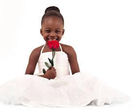 Фото Розы Белый фон Девочка Радостный Платья Негр Дети