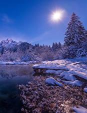 Фотографии Словения Зимние Озеро Снег Солнце Ель Zelenci Природа