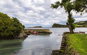 Фотография Испания Берег Причалы Залив Деревья Мох Luanco Asturias