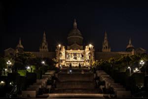 Фото Испания Барселона Дворца Ночь Кусты Уличные фонари Palau Nacional Города