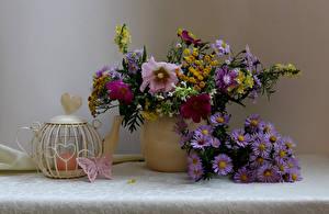Фотография Натюрморт Букеты Астры Космея Чайник Свечи Бабочки Цветы