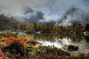 Картинки Швейцария Озеро Горы Камни Осень Туман Кусты Massersee Wallis