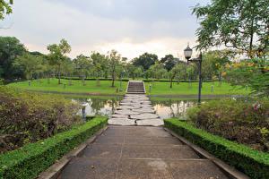 Картинка Таиланд Бангкок Парки Пруд Лестница Кусты Природа