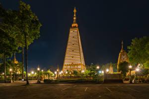 Картинки Таиланд Тропики Парки Деревья Уличные фонари Ночные Ubon Ratchathani Города