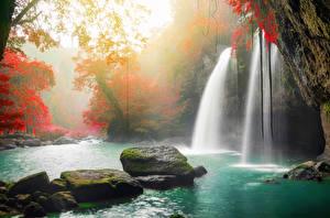 Обои Таиланд Тропики Парки Водопады Осенние Камень Мох Heo Suwat Waterfall Khao Yai National Park Природа